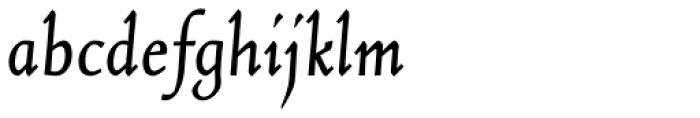 Norte Italic Font LOWERCASE