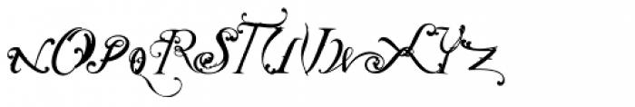 NotCaslon One Font UPPERCASE