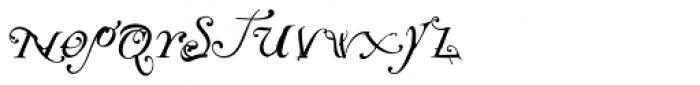 NotCaslon One Font LOWERCASE