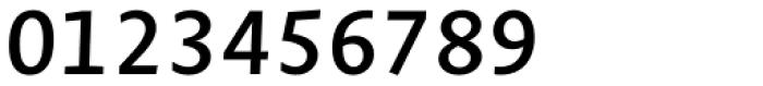 Novel Mono Pro SemiBold Italic Font OTHER CHARS