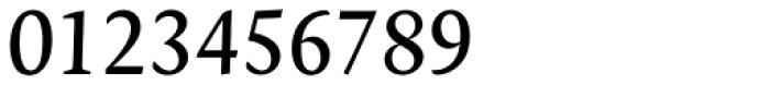 Novel Pro Italic Font OTHER CHARS