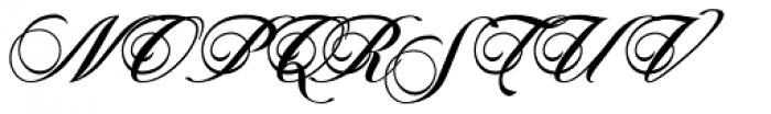 Novido Font UPPERCASE
