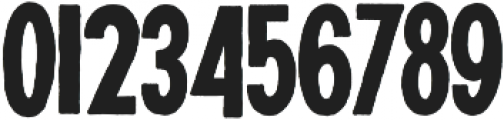 NT Plakaty otf (400) Font OTHER CHARS
