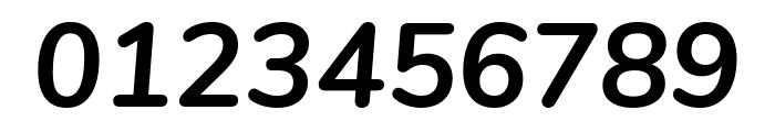 Nunito Bold Italic Font OTHER CHARS