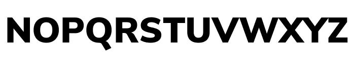 Nunito Sans Black Font UPPERCASE