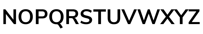 Nunito Sans Bold Font UPPERCASE