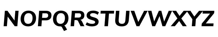 Nunito Sans ExtraBold Italic Font UPPERCASE