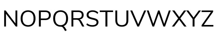 Nunito Sans Regular Font UPPERCASE