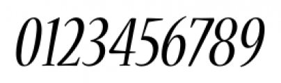Nueva� Std Condensed Italic Font OTHER CHARS