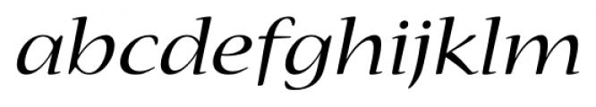 Nueva� Std Extended Italic Font LOWERCASE