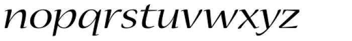 Nueva Std Ext Italic Font LOWERCASE