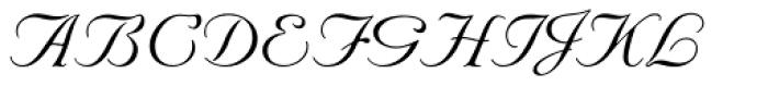 Nuptial Script Font UPPERCASE