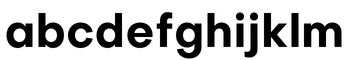 Objectivity-Bold Font LOWERCASE