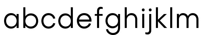 Objectivity-Regular Font LOWERCASE