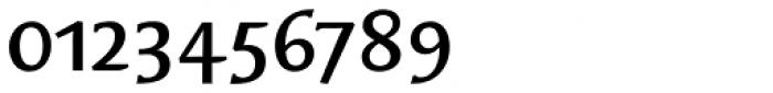 Oberon Serif EF Bold OsF Font OTHER CHARS