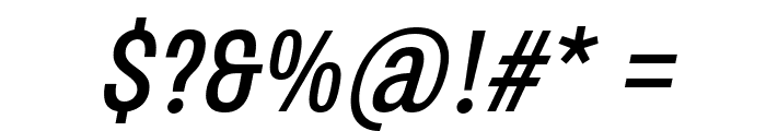 Octagen Roman Roman Italic Font OTHER CHARS