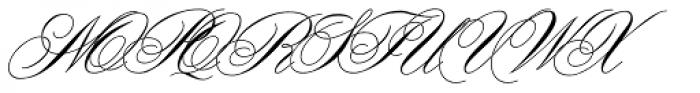 Office Script DT ALternate Regular Font UPPERCASE