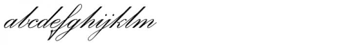 Office Script DT ALternate Regular Font LOWERCASE
