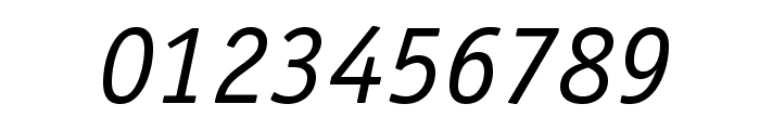 OfficinaSansStd-BookItalic Font OTHER CHARS