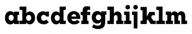 Okojo Slab Pro Bold Font LOWERCASE