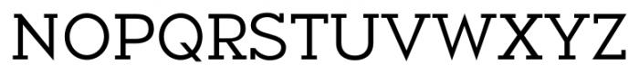 Okojo Slab Pro Regular Font UPPERCASE