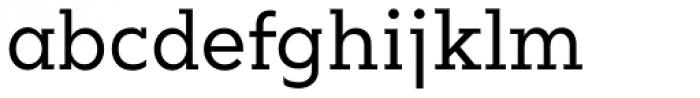 Okojo Slab Pro Regular Font LOWERCASE