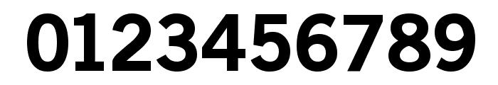 OldSansBlack Font OTHER CHARS