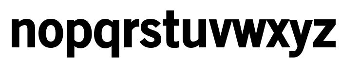 OldSansBlack Font LOWERCASE