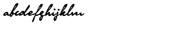 Olga Regular Font LOWERCASE