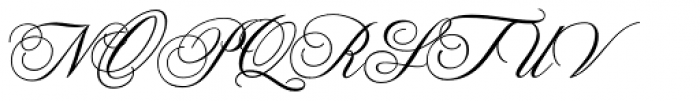 Old Fashion Script Flourishes Font UPPERCASE