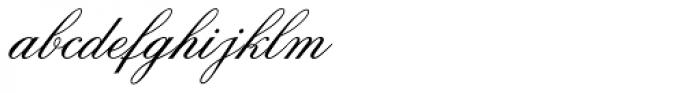 Old Fashion Script Std Font LOWERCASE