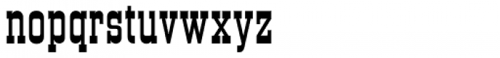 Old Towne Pro Font LOWERCASE
