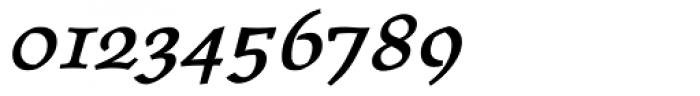 Oldrichium Demi Italic Font OTHER CHARS