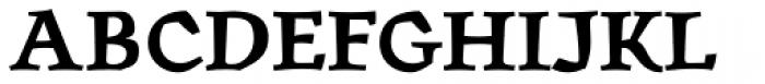 Oldrichium Pro Bold Font UPPERCASE
