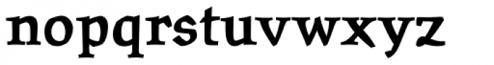Oldrichium Pro Bold Font LOWERCASE