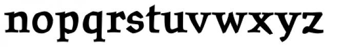 Oldrichium Std Bold Font LOWERCASE