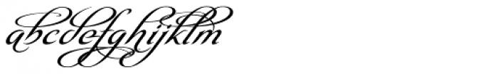 Olidia One Font LOWERCASE