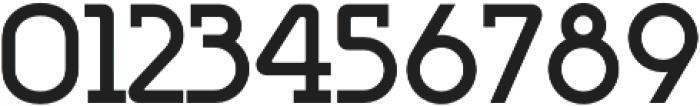 Omni Serif Bold otf (700) Font OTHER CHARS