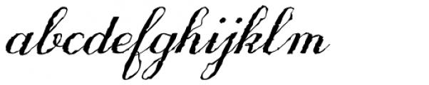 Only One Dollar Medium Italic Font LOWERCASE