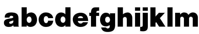 OPTIAlpine-Bold Font LOWERCASE