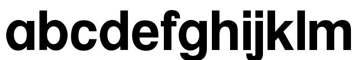 OPTIAlpineBold-Primer Font LOWERCASE