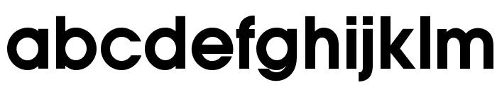 OPTIAuvantGothic-DemiBold Font LOWERCASE