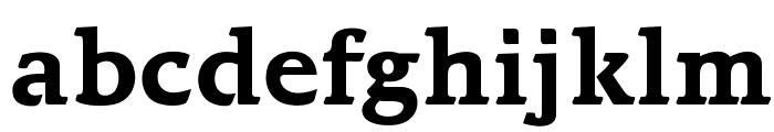 OPTIBari-Bold Font LOWERCASE