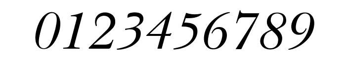 OPTIBaskerVille-Italic Font OTHER CHARS