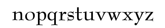 OPTIBenjieModern Font LOWERCASE