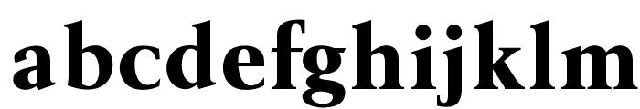 OPTIBerlingBold-Agency Font LOWERCASE