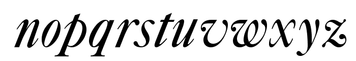 OPTICaslonFive-Swash Font LOWERCASE