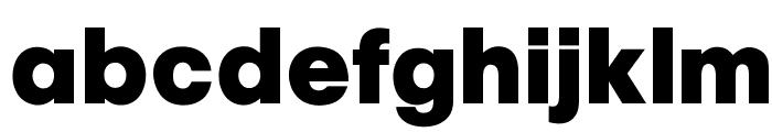 OPTIChampionBold Font LOWERCASE