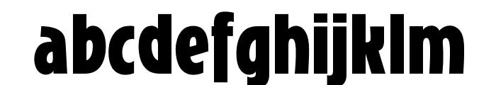 OPTIChartresGothic-Bold Font LOWERCASE