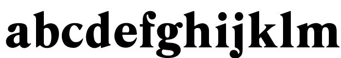 OPTIDanley-Bold Font LOWERCASE